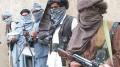 Punjabi Terrorists