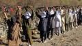Punjabis and Arab in Afghanistan fighting.