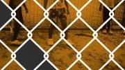 The Nauru files