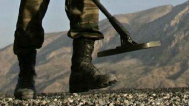 ۱۳۰۰ زیات افغانان