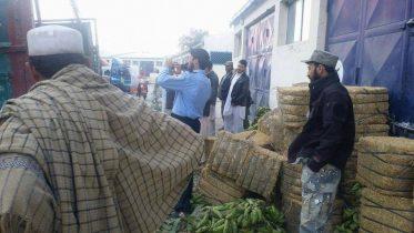 Pakistan truck driver arrested in Torkham,