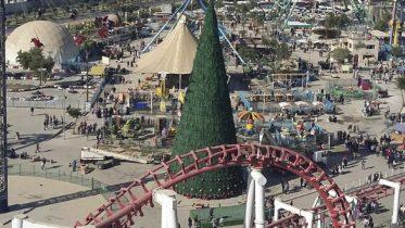 tallest Christmas tree