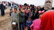 Mosul tragedy