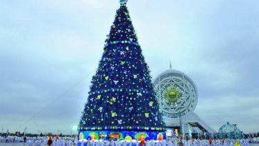 New Year Tree lights up