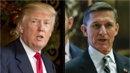 Flynn's Immunity