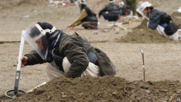 ملګروملتونو ننګرهار کې د داعش له خوا د یو ماین پاک وژل په کلکه غندلي