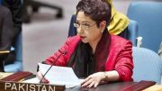 'India mother of terrorism in South Asia,' Maleeha Lodhi tells UN