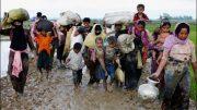 Pope says he ´wept´ while meeting Rohingya refugees