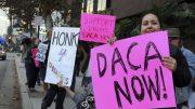 Trump: Deportation Protection Program 'Probably Dead'
